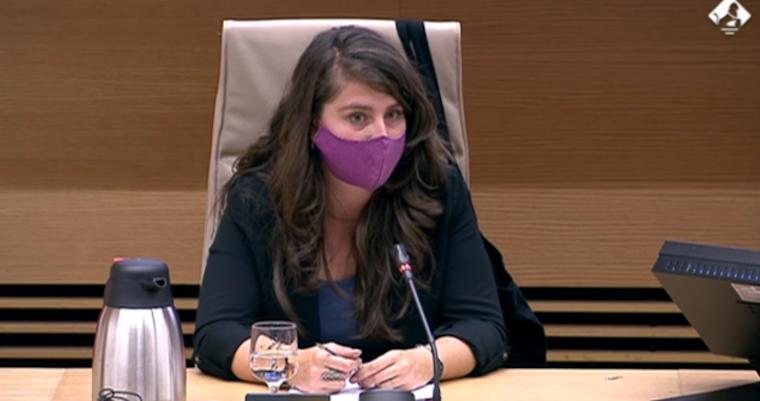 Sandra Vicente en comparecencia en el Congreso de los diputados